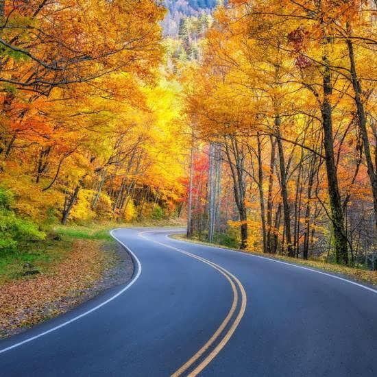 جدیدترین و جذاب ترین عکس طبیعت پاییزی زیبا و متنوع