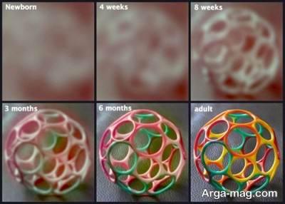 نحوه دید نوزاد تا 6 ماهگی