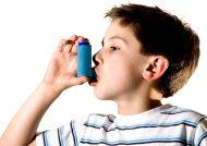درمان گیاهی تنگی نفس در افراد