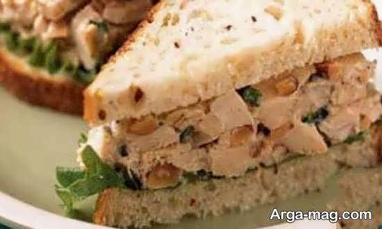 طرز تهیه ساندویچ سرد با گوشت مرغ و سبزیجات