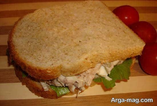 طرز آماده کردن ساندویچ سرد خوشمزه با مواد خوراکی سالم