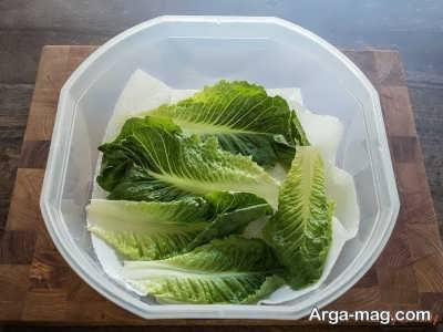 روش تازه نگه داشتن سبزی در جعبه