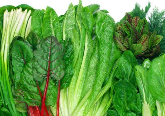 انواع سبزی ها نحوه استفاده