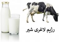 رژیم لاغری شیر مخصوص کاهش وزن سریع و مطمئن