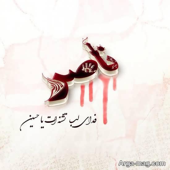 عکس نوشته اسم ناصر با طرحی لاکچری