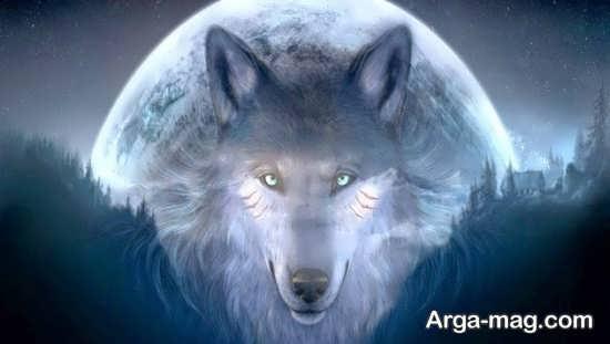 تصویر زیبایی از گرگ و ماه