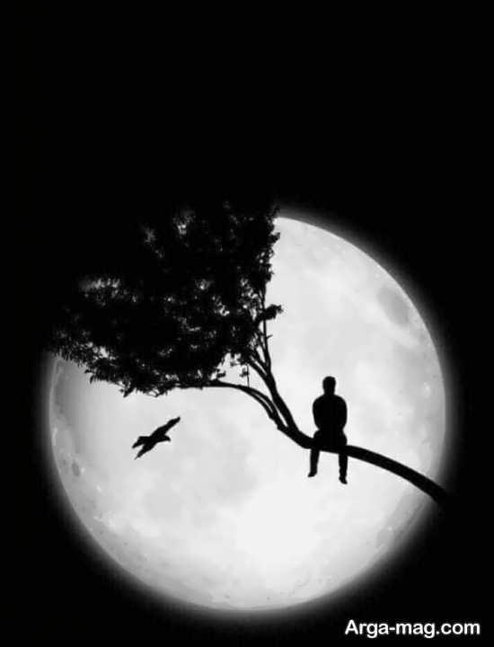 تصویر دیدنی و زیبا از ماه
