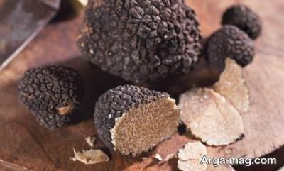 قارچ دنبلان از کمیاب ترین و گران ترین قارچ ها