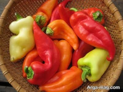 غذای تند در بارداری مفید است یا مضر