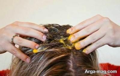 تقویت مو با زرده تخم مرغ