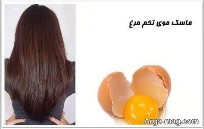 رشد بیبشتر مو با تخم مرغ