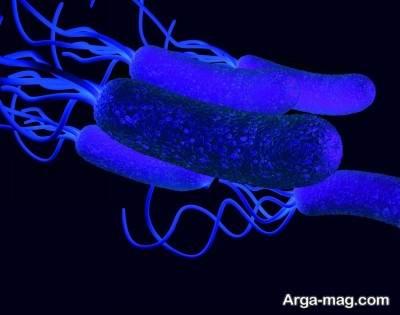 عفونت معده چیست