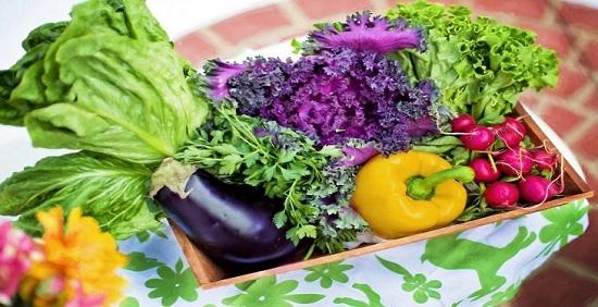 بهترین سبزیجات برای تناسب اندام