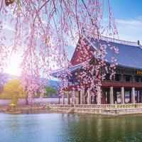 مکان های دیدنی کره جنوبی برای توریست ها