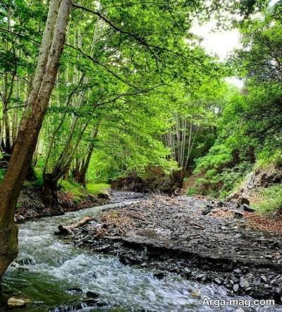 روستای اخلمد و چشمه های فراوان در آن