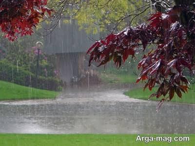 متن ناب در مورد باران