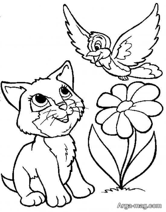 مدل های دوست داشتنی طراحی گربه