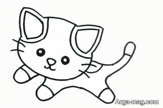 طراحی گربه در مدل های مختلف
