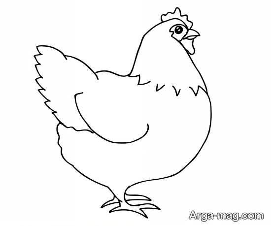 کشیدن مرغ با طرح های قشنگ