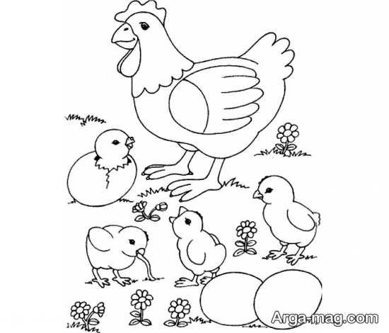 متفاوت ترین نقاشی مرغ