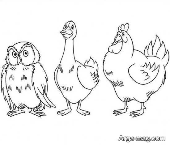 خاص ترین نقاشی مرغ