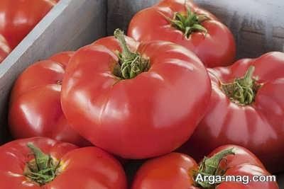 مصرف گوجه فرنگی برای لاغری