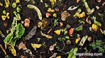 تهیه کود خانگی برای تغذیه گیاهان
