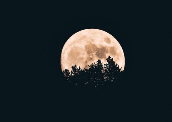 نحوه عکاسی در شب