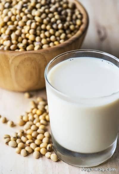 چگونگی تهیه مواد غذایی پروتئین دار