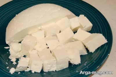 فواید پنیر برای تامین پروتئین بدن
