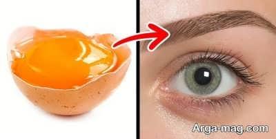 تقویت ابروها با تخم مرغ