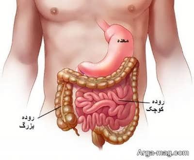علایم عفونت روده و روش درمان آن