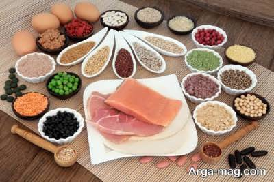 تاثیر مواد غذایی پروتئین دار بر بدن