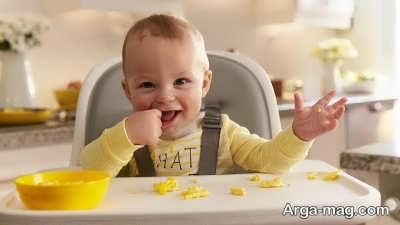دادن تخم مرغ به نوزاد از چند ماهگی شروع می شود؟