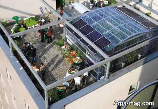 برقراری و ایجاد گلخانه در بالای سقف بیرونی خانه و زیبایی و طبیعت