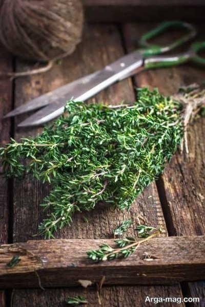 چای آویشن برای درمان سوزش معده