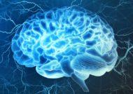 افزایش کارایی مغز با تکنیک های متفاوت