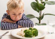 چگونگی از دست دادن اشتها در کودکان