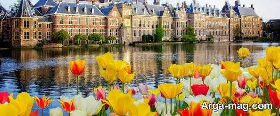 کشور هلند دارای رتبه دوم در صادرات مواد غذایی