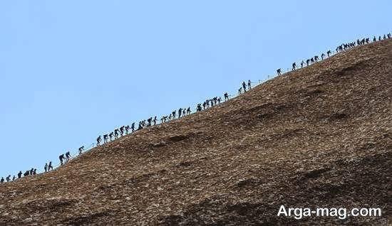 بالا رفتن توریست ها از صخره معروف اولورو در استرالیا