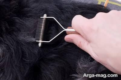 مصرف دارو های مختلف بری رفع ریزش مو ارثی