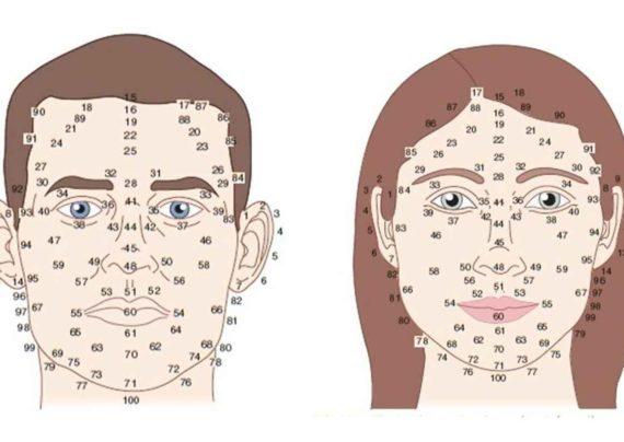 شخصیت شناسی از روی بینی فرد
