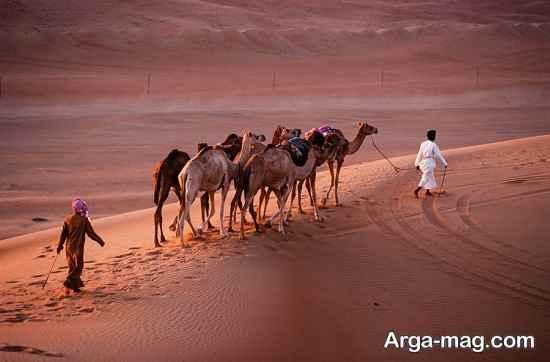شرایط کاری در عمان