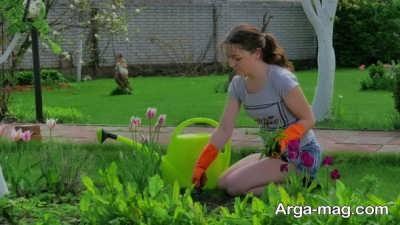 خاک مناسسب برای کاشت و پرورش گل آهار