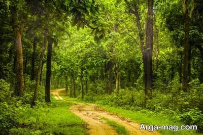 پارک های موجود در کشور هند
