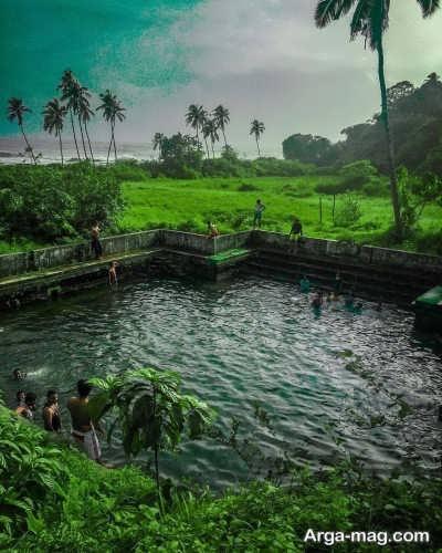 حوضچه های کرالا و حیوانات آبزی موجود در آن