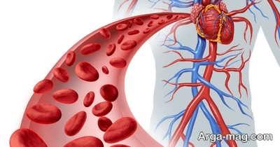 تقویت گردش خون با روش های طبیعی