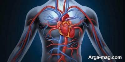 بهبود گردش خون با کمک روش های خانگی