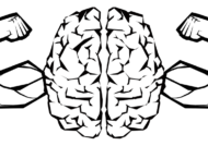 بهبود حافظه تصویری با استفاده از مواد غذایی مفید.