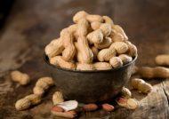 مصرف بادام زمینی در بارداری برای حفظ سلامت مادر و جنین